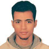 mohamed mostafa shehata
