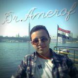 Ameer Abdel Wakil