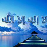 Mohamed Alsayd