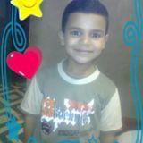 محمد حامد محمد