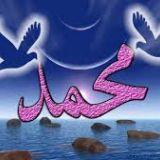 محمد كرم احمد تغيان