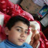 عمر عبد الفتاح شريف
