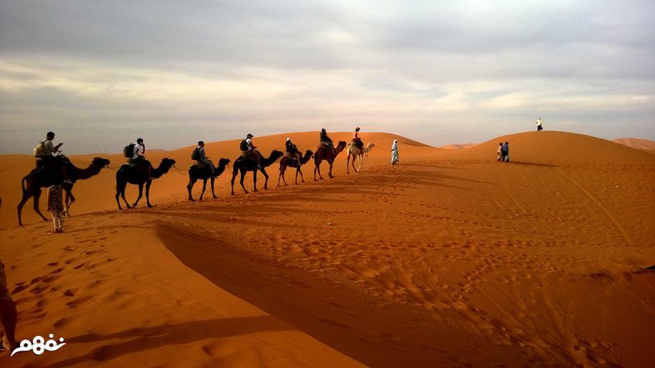 مجلة نفهم خصائص طبيعة البيئة الصحراوية دراسات اجتماعية الصف السادس الابتدائي نفهم